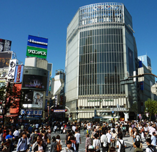 Useful Phrases
