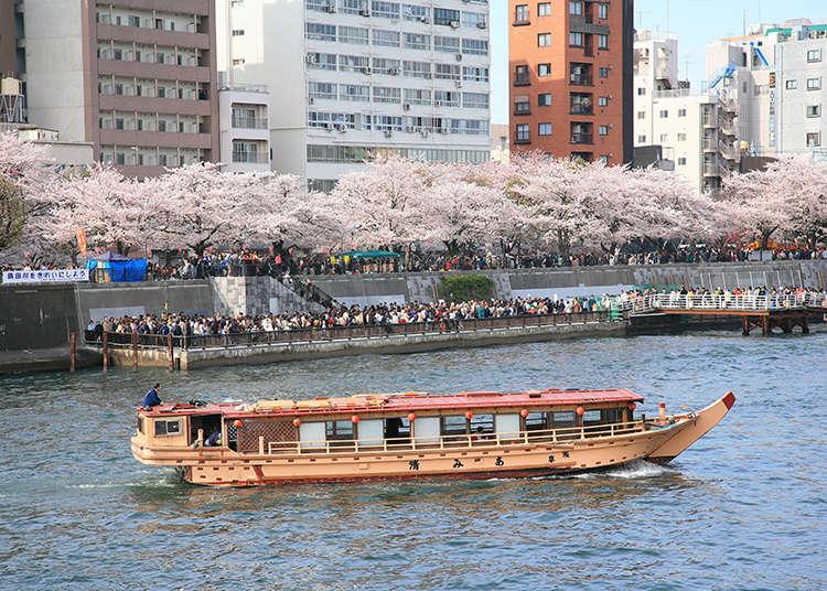4: Sumida Park (Taito-ku)