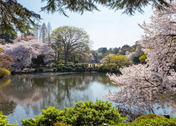1:新宿御苑