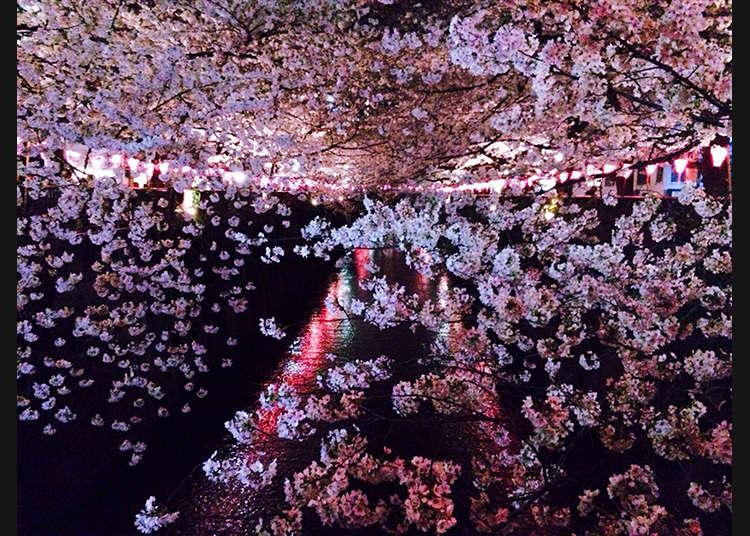 6. 메구로가와 강