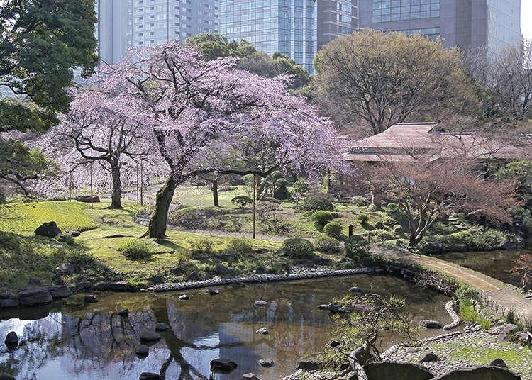 """8: """"Koishikawa Korakuen Garden"""" (Taman Koishikawa Korakuen)"""