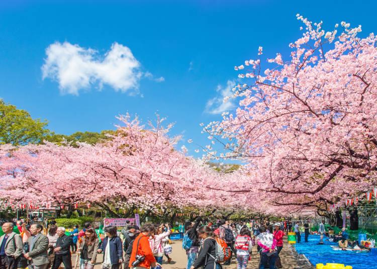 2:上野恩賜公園