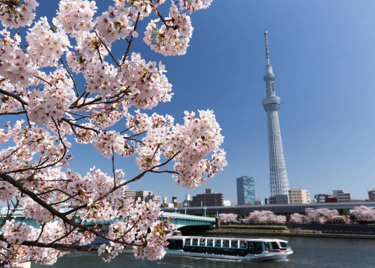 4:台東區立隅田公園