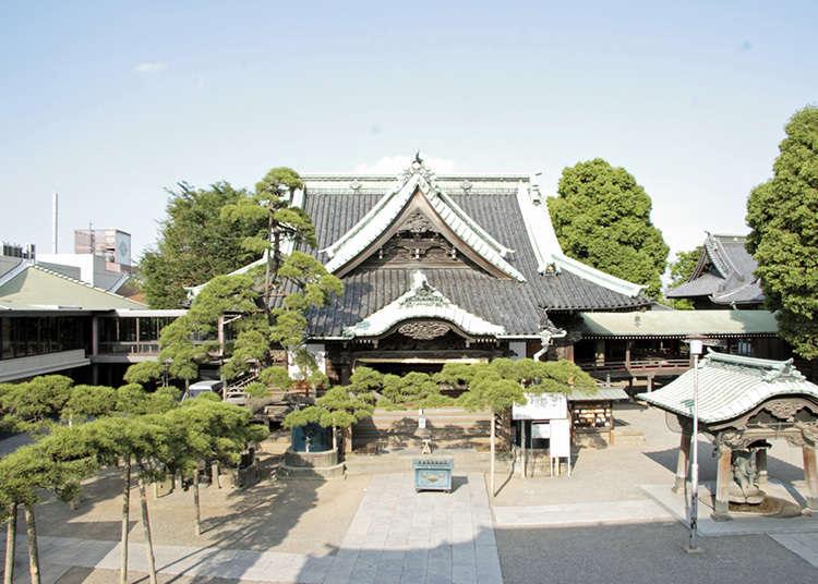6: วัดชิบะมะตะ ไทชะคุเต็น (Shibamata Taishakuten)