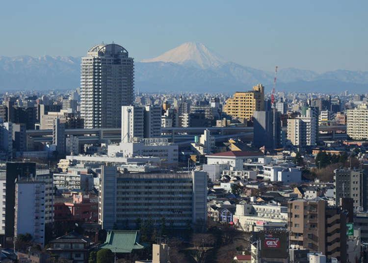 Menikmati pemandangan Gunung Fuji sambil menjamu selera