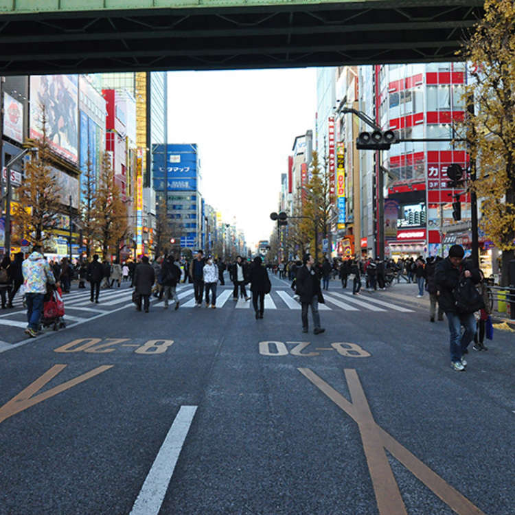 Capture the Ambience of Akihabara!