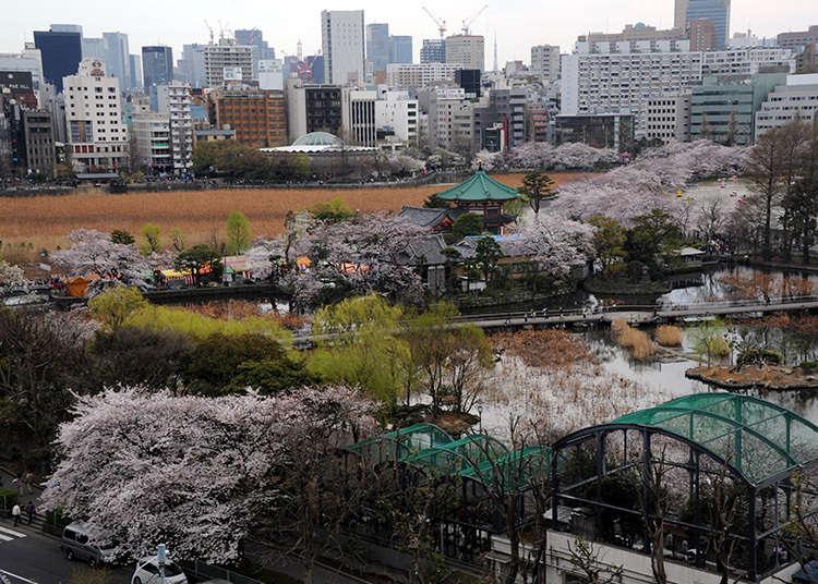 Asal usul nama lain, Ueno no Yama