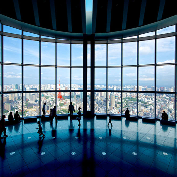 A Panoramic View of Tokyo