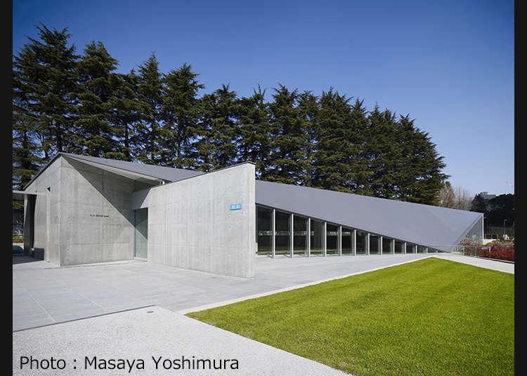 邊看邊親身體驗,讓人感動的新感受美術館
