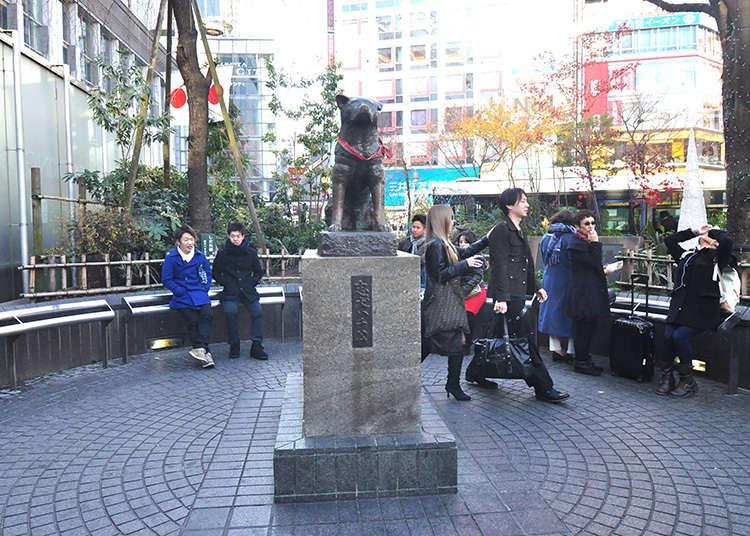Tempat Bertemu di Shibuya