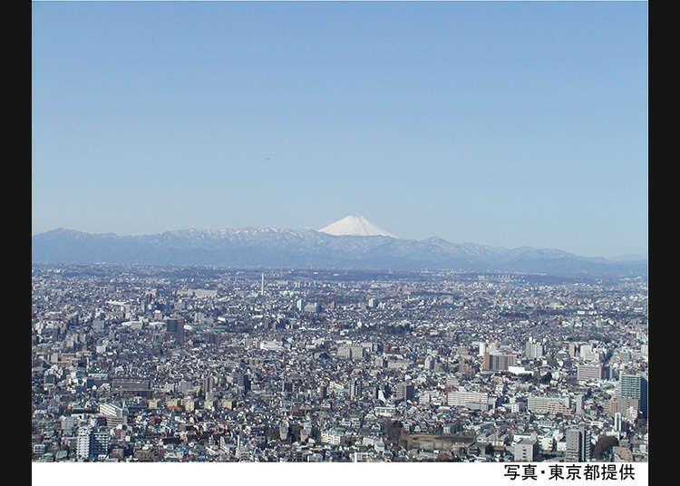 从东京都厅的特别展望厅眺望的景色