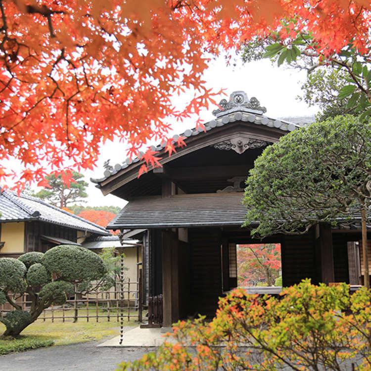 Elegance of Old: the Sakura Daimyo Domain