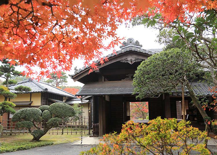 Kediaman penguasa feodal terakhir klan Sakura yang bercita rasa feodal masa lalu