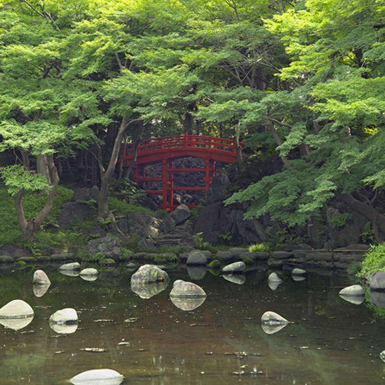 5 - The Koishikawa Korakuen Garden