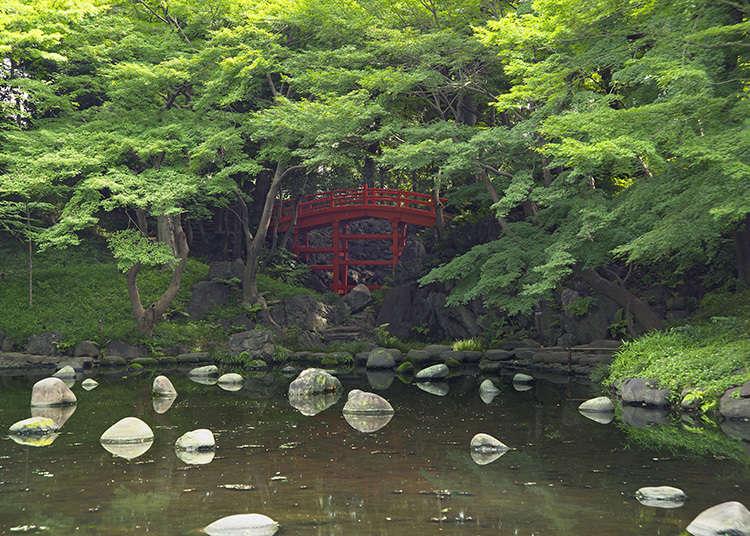 5: Taman Koishikawa Korakuen