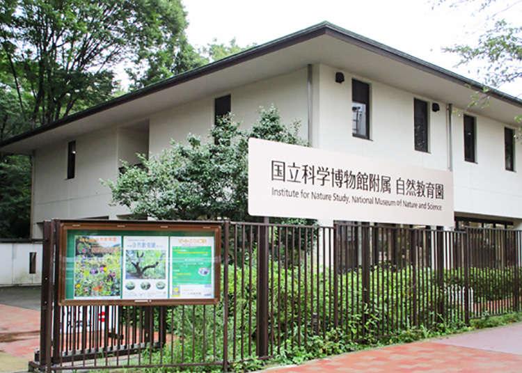 「国立科学博物館附属自然教育園」