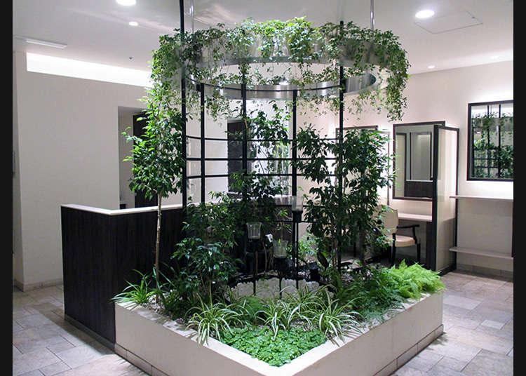 [Shinjuku] Ruangan santai yang dipenuhi air dan kehijauan