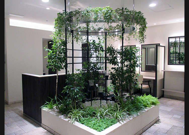 """""""新宿""""洋溢着水和绿的治愈空间"""