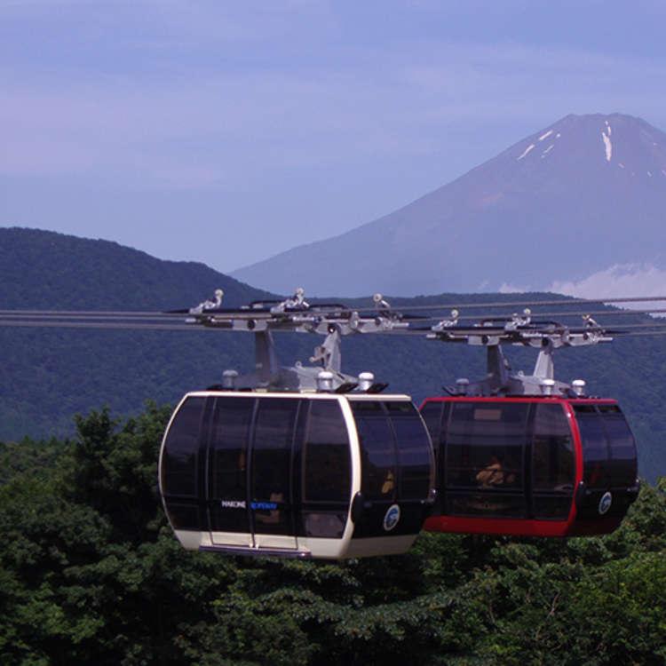 亲眼俯瞰箱根四季的绝景