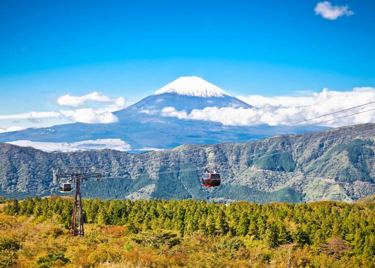 在眼前俯視箱根四季的美景