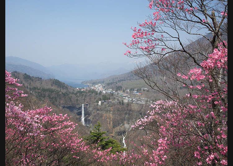 Dek pemandangan di mana anda boleh menyaksikan keseluruhan alam semulajadi Nikko
