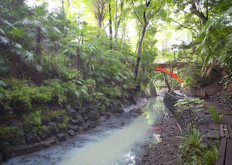 在東京23區內唯一的翠綠溪谷散步