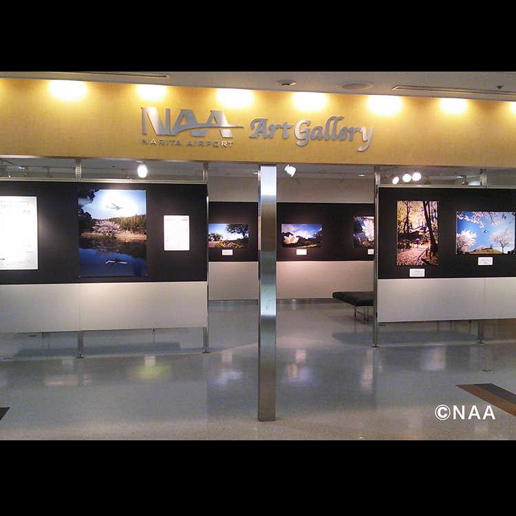 Art Appreciation at the NAA Art Gallery
