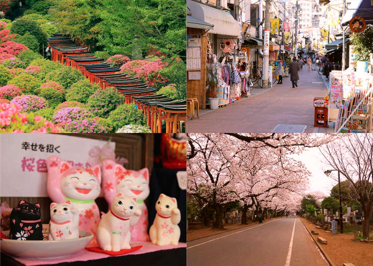 Exploring Old Tokyo's Neighborhoods: 11 Things To Do in Yanesen (Yanaka, Nezu, and Sendagi)!