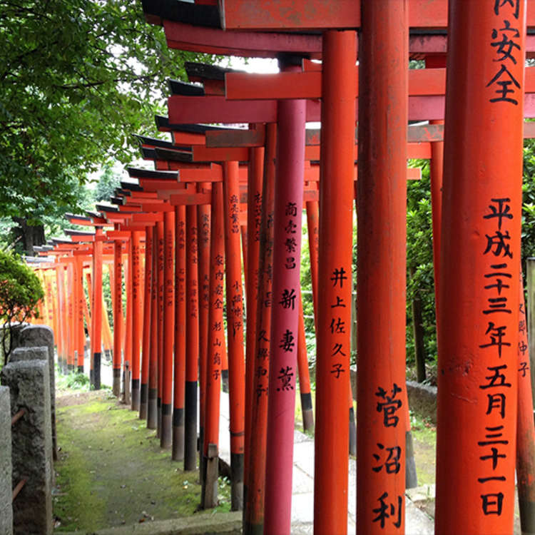 Capture the Mysterious Atmosphere of the Nezu Shrine Precinct at the Shrine Gate of the Otome Inari Shrine