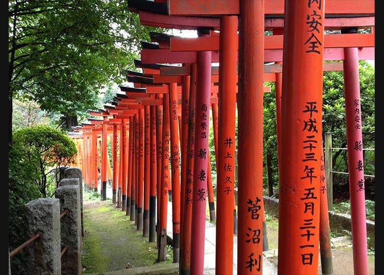 籠罩著神秘氣氛的「根津神社」乙女稻荷鳥居