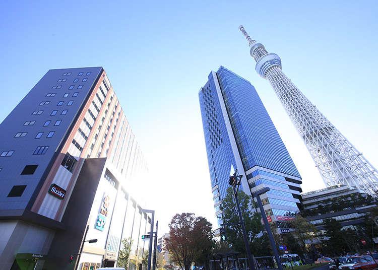도쿄 관광의 출발점으로 최적