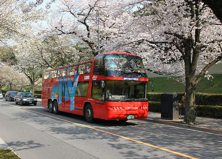 周遊バスで観光