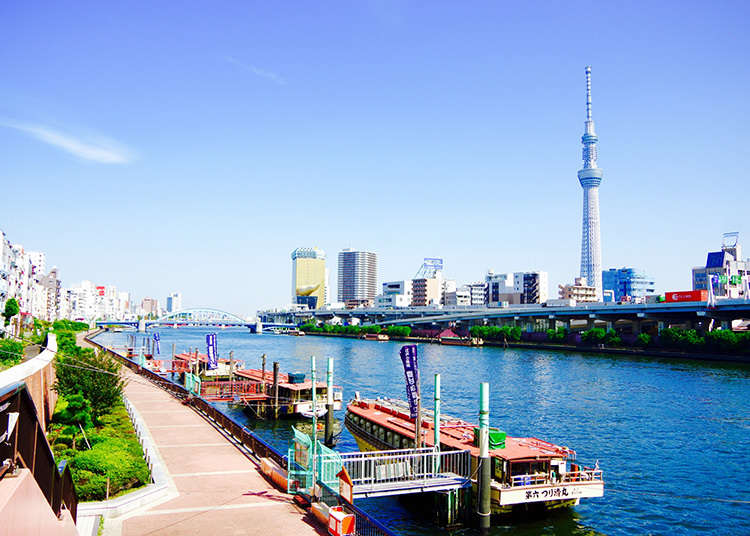 東京スカイツリー(R)を眺める