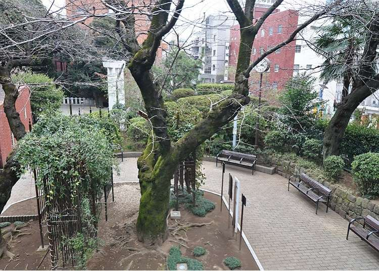 在六本木能感受到日本风情的地方