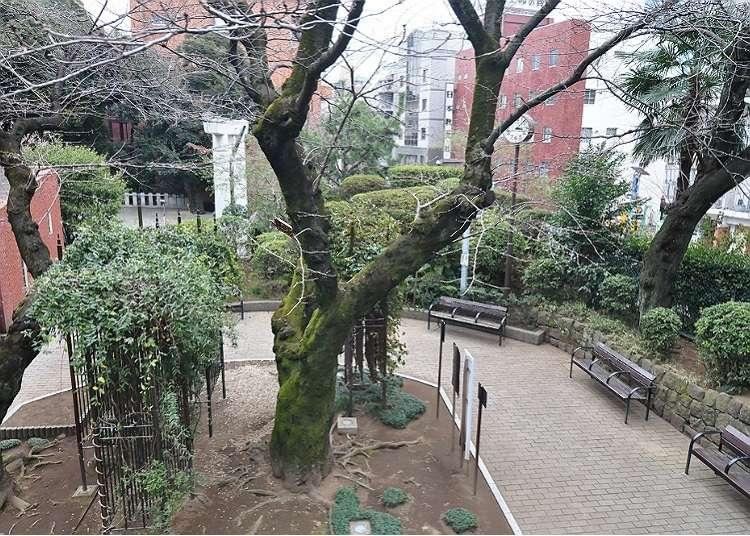在六本木可以感受到日本風情的地方