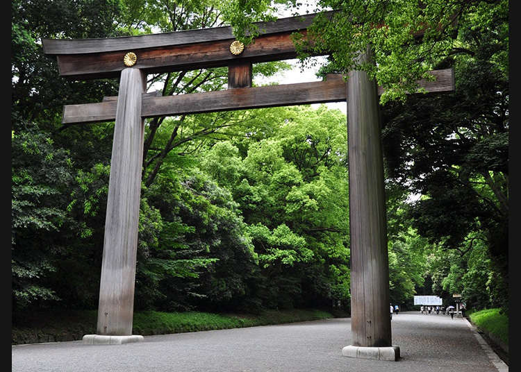 The largest Torii (Traditional Japanese Gate) in Japan