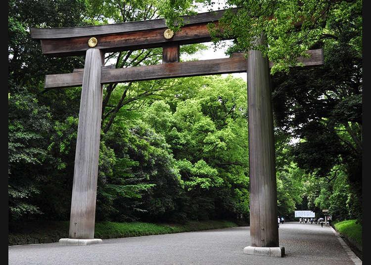Gerbang Torii Terbesar di Jepang