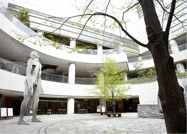 Places to Visit in Shinjuku: Enjoy a Calm Atmosphere!