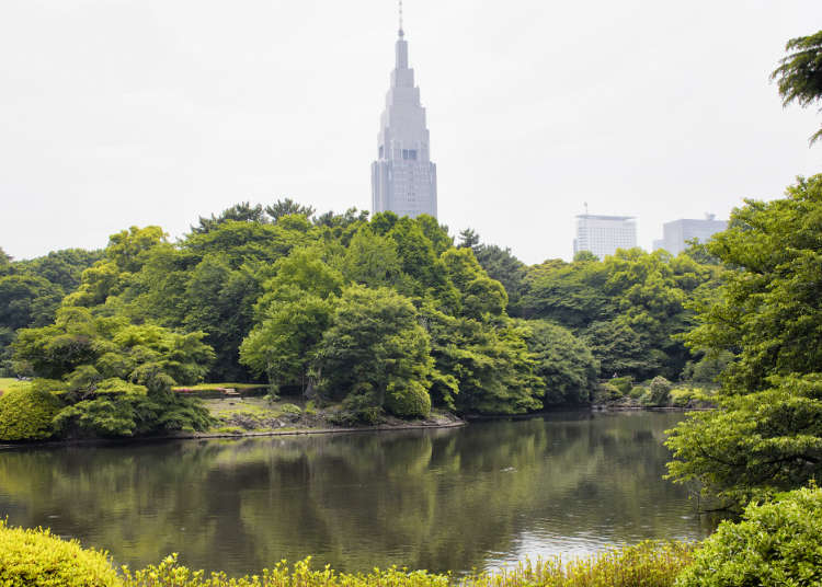 The Spot in Shinjuku Where You Can Feel the Green