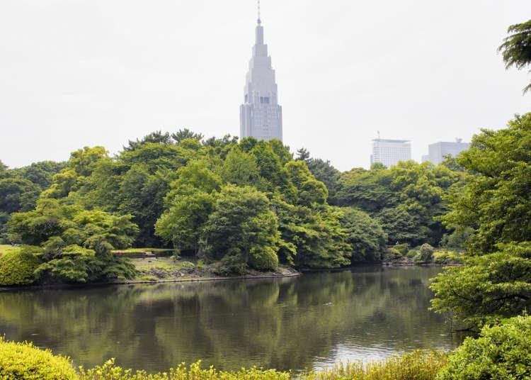 Tempat untuk menikmati alam semulajadi di Shinjuku