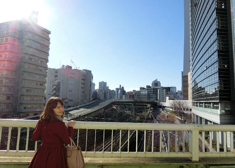 Mutsumata-rikkyo Overpass
