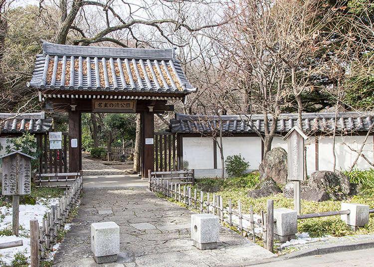 4개의 폭포가 둘러싼 녹음이 우거진 일본 정원