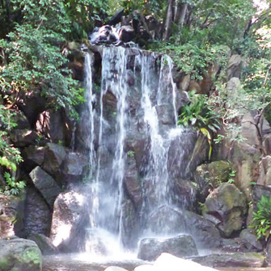 A waterfall at the park? A free secret oasis to heal your mind near the station