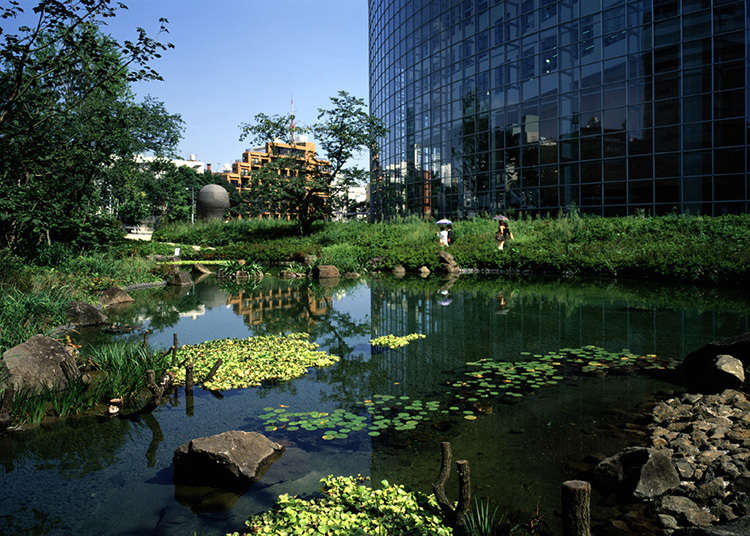 日本庭園で休憩を