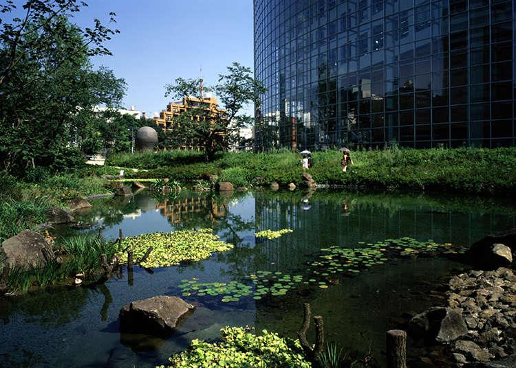 일본 정원에서 휴식을