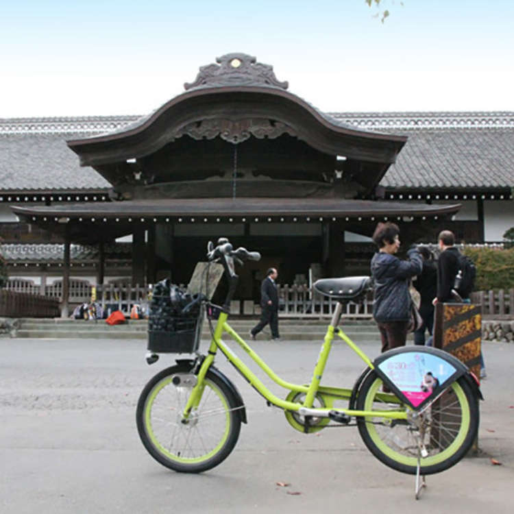Cycle around Koedo, Kawagoe on rented bicycles