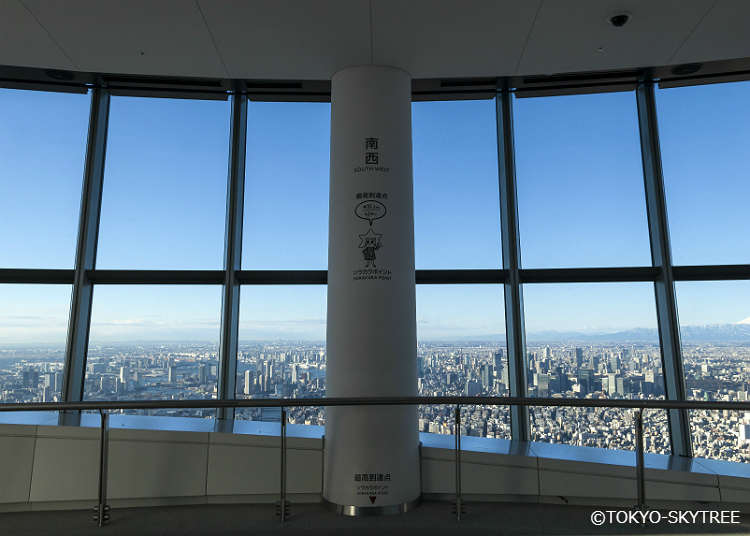 What Can You See from the Observation Deck?