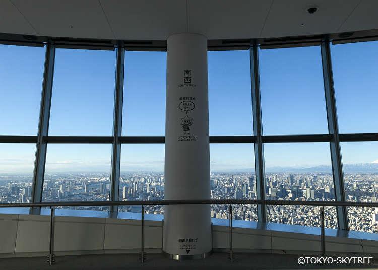 从展望台可以眺望到哪里?