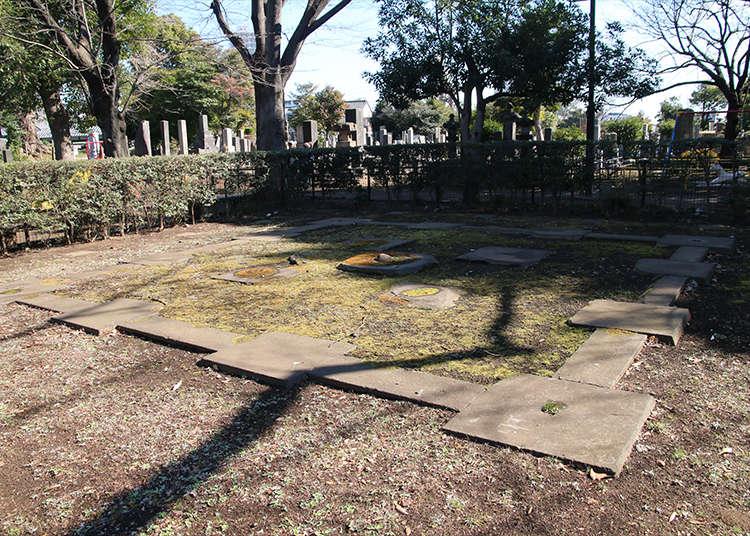 広大な敷地に残る「五重塔跡」