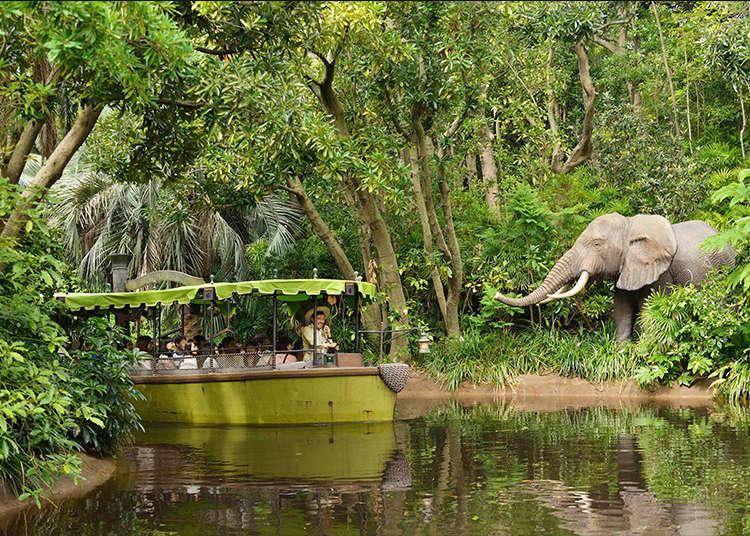 """""""Jungle Cruise"""" pengembaraan sebenar"""